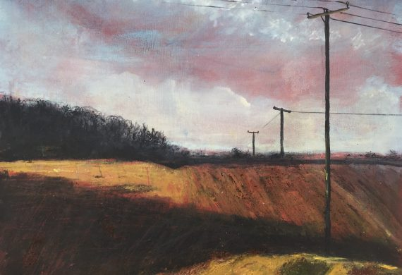 Telephone Poles in Fields